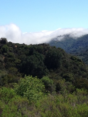 Topanga State Park