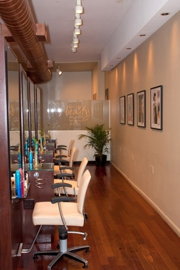 Charles Elias Salon