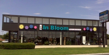 In Bloom Flowers - Arlington