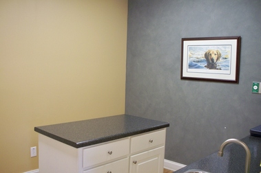 Mallards Landing Veterinary