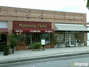 Monrovia Floral