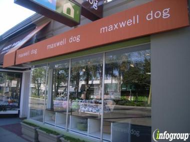Maxwell Dog