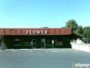 Payne &amp; Morrison Florists Inc